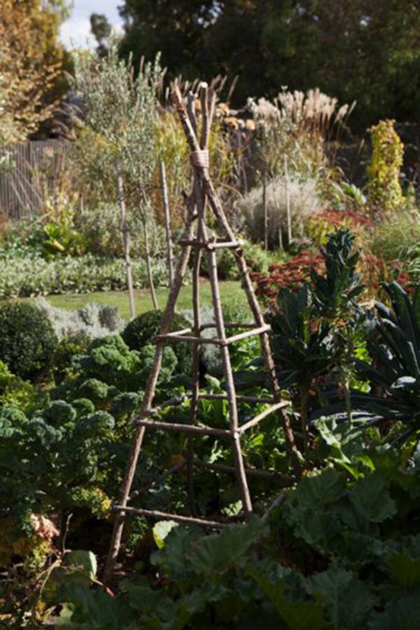 Garden trellis by Kate Ellis. Photo: supplied.